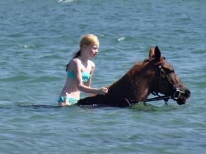 Scarlet swim