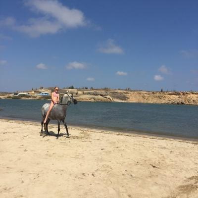 Horseback riding Bonaire